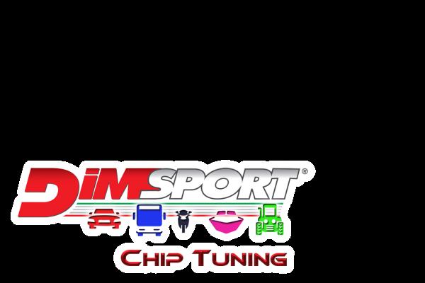 dimsport1